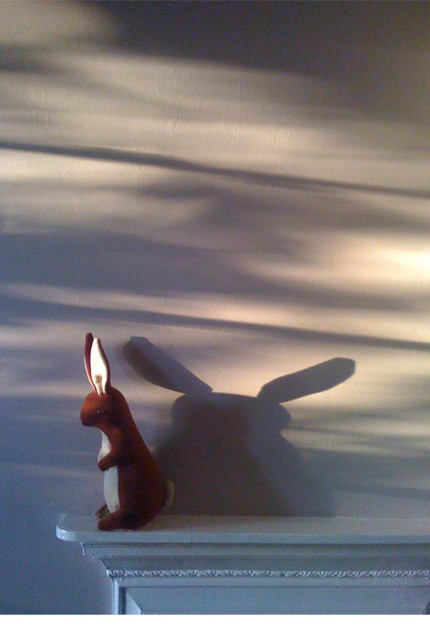 Photograph of Jaeger toy rabbit and shadows across a wall